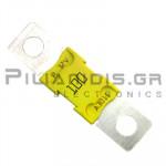 Automotive Fuse 32V 100A  16,3x67,3mm Yellow